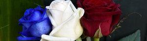 urn:newsml:dpa.com:20090101:151114-90-013715