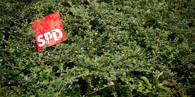 urn:newsml:dpa.com:20090101:130823-90-008706