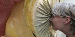 Modell einer begehbaren Prostata erstmals ausgestellt