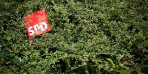 SPD-Bundestagswahlkampf